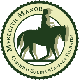 Equine Massage Therapy Certification