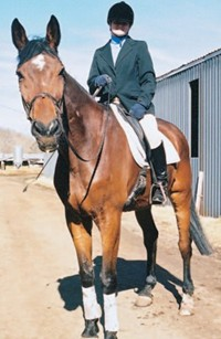Feature horse Lurch loves his job in Meredith Manor Equestrian College's english departments