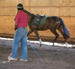 Students in horse training class at Meredith Manor.