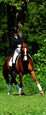 Nancy Sterrett, head of the dressage riding department.